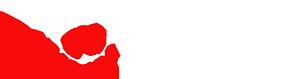 PsychSearch Logo
